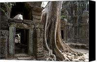 Southeast Asia Canvas Prints - Fig Tree Growing Over Crumbling Ruins Canvas Print by Rebecca Hale