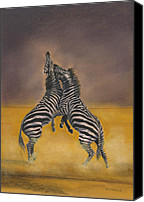 Zebra Pastels Canvas Prints - Fight for Survival Canvas Print by Bev Lewis