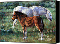 Wild Horse Pastels Canvas Prints - Filly Canvas Print by Deb LaFogg-Docherty