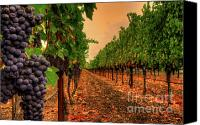 Blue Grapes Canvas Prints - Final Moments Canvas Print by Mars Lasar