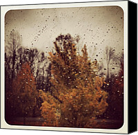 Rain Canvas Prints - Finally! Well Overdue Rain. Most Of Canvas Print by Amber Flowers