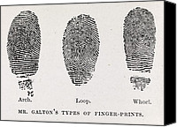Biometric Canvas Prints - Fingerprint Types, 17th Century Canvas Print by Middle Temple Library