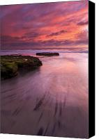 Sea Canvas Prints - Fingers of the Tide Canvas Print by Mike  Dawson
