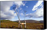 Beaters Canvas Prints - Fire Brooms On A Heather Moor Canvas Print by Duncan Shaw