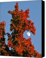 Branches Canvas Prints - Fire Dragon Tree Eats Moon Canvas Print by CML Brown