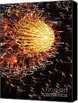 Flower Works Canvas Prints - Fire Flower Canvas Print by Karen Wiles