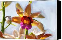Imaging Painting Canvas Prints - Firefox  Orchid Painting Canvas Print by Don  Wright