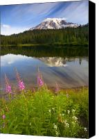 Mt. Rainier Canvas Prints - Fireweed Reflections Canvas Print by Mike  Dawson
