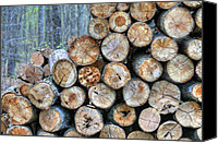 Fire Wood Canvas Prints - Firewood as Art Canvas Print by JC Findley