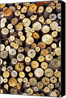 Fire Wood Canvas Prints - Firewood Canvas Print by Carlos Caetano