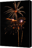 4th July Canvas Prints - Fireworks 1580 Canvas Print by Michael Peychich