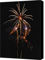 Independence Day Canvas Prints - Fireworks 5 Canvas Print by Michael Peychich