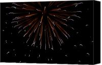 Fourth Of July Photo Canvas Prints - Fireworks Explode In The Air In Kansas Canvas Print by Joel Sartore