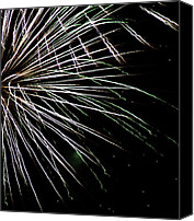 Independence Day Canvas Prints - Fireworks Fun 10 Canvas Print by Marilyn Hunt