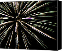 Independence Day Canvas Prints - Fireworks Fun 12 Canvas Print by Marilyn Hunt