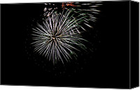 Independence Day Canvas Prints - Fireworks Fun 3 Canvas Print by Marilyn Hunt