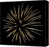 Independence Day Canvas Prints - Fireworks Fun 4 Canvas Print by Marilyn Hunt