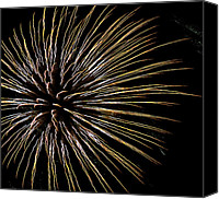 Independence Day Canvas Prints - Fireworks fun 6 Canvas Print by Marilyn Hunt