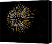 Independence Day Canvas Prints - Fireworks Fun 7 Canvas Print by Marilyn Hunt