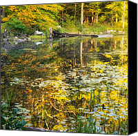 Lilly Pad Canvas Prints - First Colors Canvas Print by Bill  Wakeley