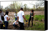 Michelle Obama Canvas Prints - First Lady Michelle Obama Helps Plant Canvas Print by Everett