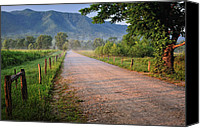 Country Dirt Roads Photo Canvas Prints - First Light - Sparks Lane at Cades Cove Tennessee Canvas Print by Thomas Schoeller