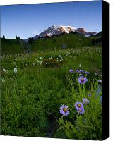Mt. Rainier Canvas Prints - First Light Canvas Print by Mike  Dawson