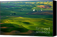 Countryside Photo Canvas Prints - First light on the Palouse Canvas Print by Mike  Dawson