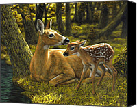 Deer Canvas Prints - First Spring - variation Canvas Print by Crista Forest