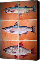 Salmon Ceramics Canvas Prints - Fish Mural On Terracotta Tiles Canvas Print by Andrew Drozdowicz