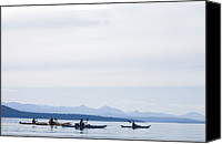 Valdes Canvas Prints - Five People Kayak In The Gulf Islands Canvas Print by Taylor S. Kennedy