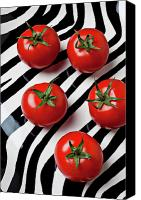 Five Canvas Prints - Five tomatoes  Canvas Print by Garry Gay