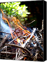Barbecue Canvas Prints - Flame Canvas Print by Alessandro Della Pietra