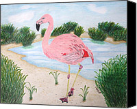 Pink Flamingo Drawings Canvas Prints - Flamingo in the Marsh Canvas Print by Alyssa Glosson