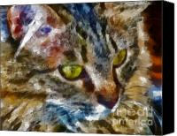 Marilyn Sholin Canvas Prints - Fletcher Kitty Canvas Print by Marilyn Sholin