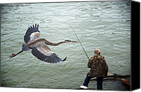 Buy Photos Online Canvas Prints - Flight of the Blue Heron Canvas Print by Steven  Michael