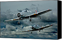 Winjeels Canvas Prints - Flight of the Winjeels Canvas Print by Steven Agius