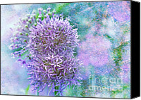 Botanicals Mixed Media Canvas Prints - Floral Burst Canvas Print by Elaine Manley