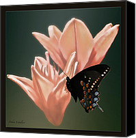 Flower Works Canvas Prints - Floral Butterfly Dance Canvas Print by Debra     Vatalaro