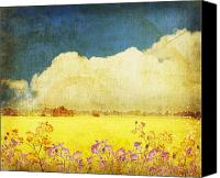 Burnt Canvas Prints - Floral In Yellow Field Canvas Print by Setsiri Silapasuwanchai