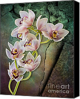 Painterly Orchids Canvas Prints - Floral Passion Canvas Print by Susan Candelario