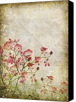 Materials Canvas Prints - Floral Pattern Canvas Print by Setsiri Silapasuwanchai