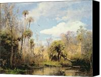 Swamp Canvas Prints - Florida Palms Canvas Print by Herman Herzog