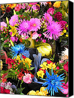 Flowers   Spider Canvas Prints - Florist Display Canvas Print by Robert P Hedden