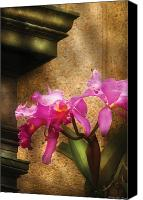 Cattleya Canvas Prints - Flower - Orchid - Cattleya  Canvas Print by Mike Savad