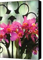 Cattleya Canvas Prints - Flower - Orchid - Its all in the presentation Canvas Print by Mike Savad