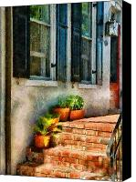 Stucco Canvas Prints - Flower - Plants - The Stoop  Canvas Print by Mike Savad