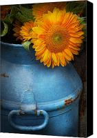Suburbanscenes Canvas Prints - Flower - Sunflower - Little blue sunshine  Canvas Print by Mike Savad