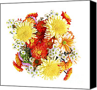 Special Canvas Prints - Flower bouquet Canvas Print by Elena Elisseeva