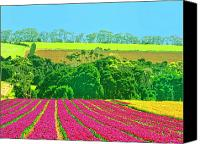 Kaanapali Mixed Media Canvas Prints - Flower Farm and Hills Canvas Print by Dominic Piperata